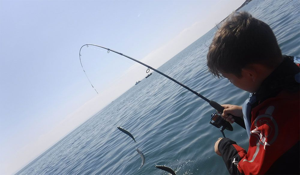 Harrison battles with a full string of mackerel