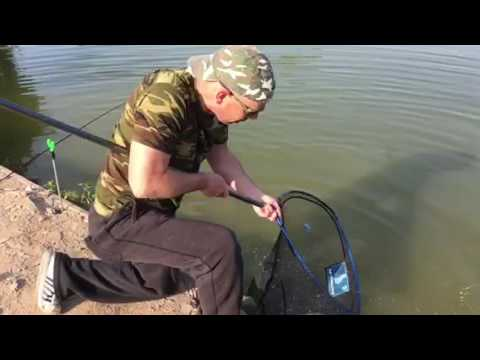 14lb Common Carp on the HTO Rockfish 73 Rod