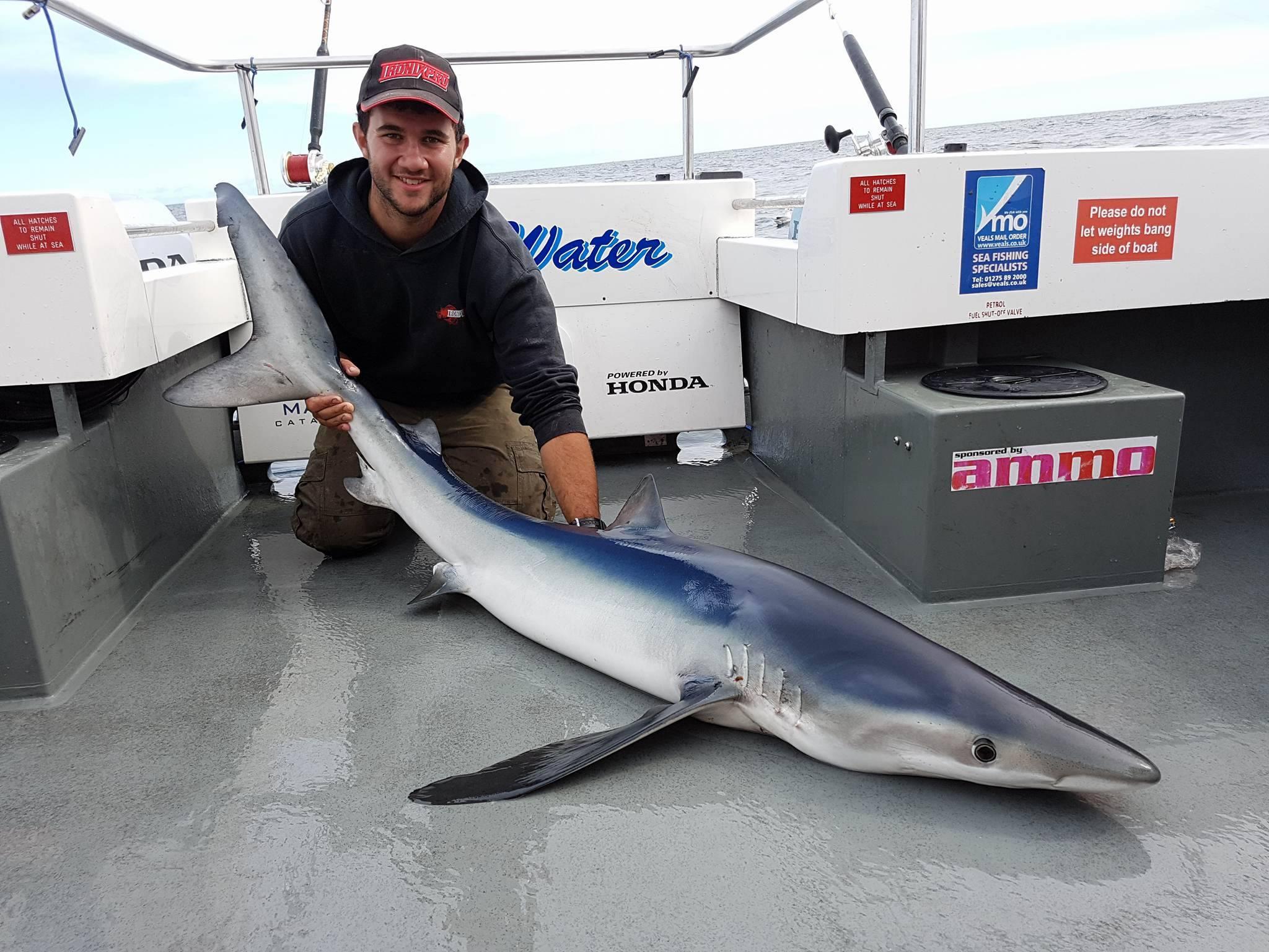 Blue Shark Fishing