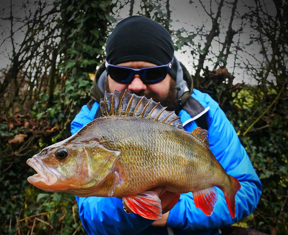 Ant Glascoe with a Perch