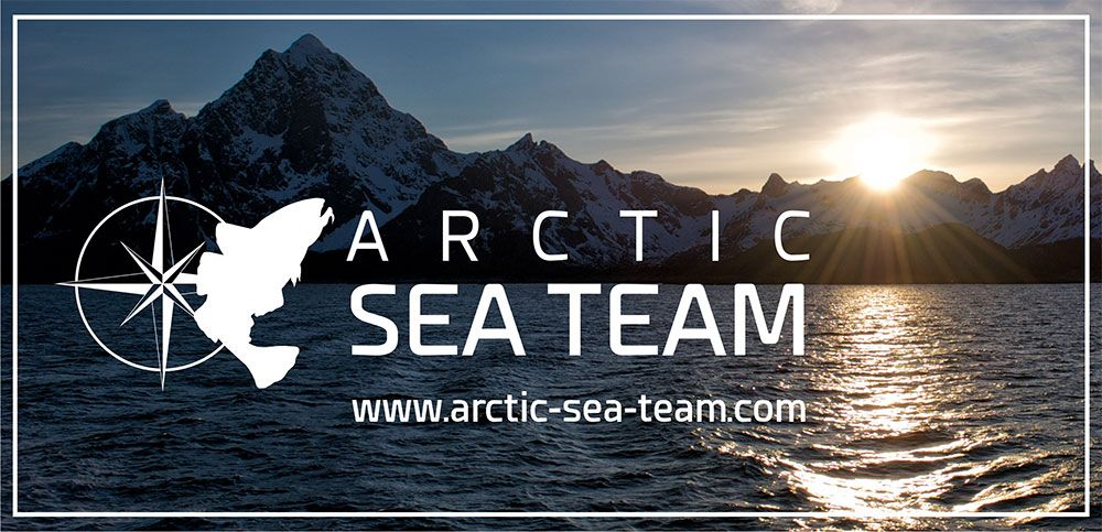 Arctic Sea Team